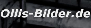 Ollis-Bilder.de